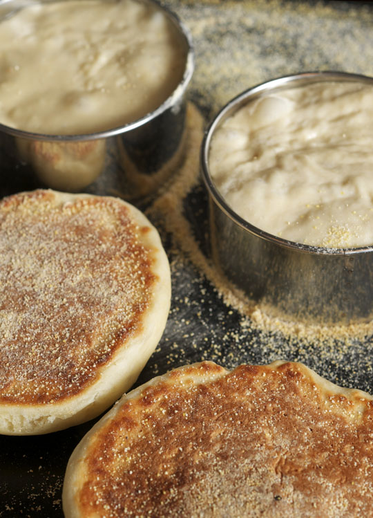 Homemade English muffins, free form and in molds