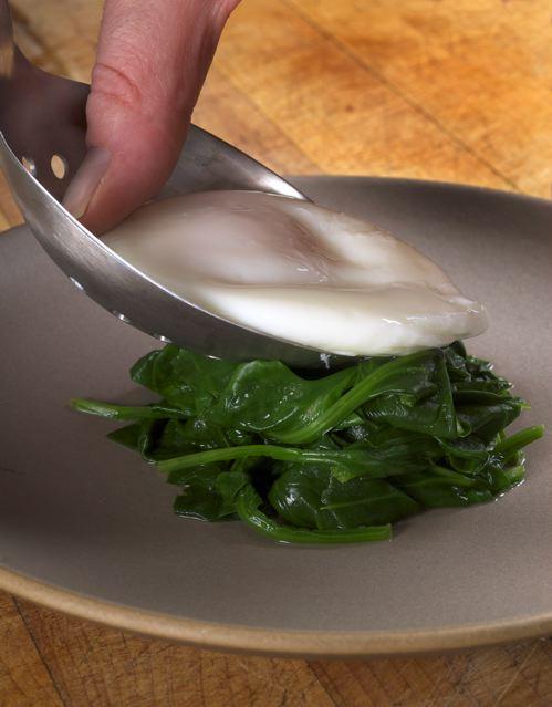 Egg spoon #1