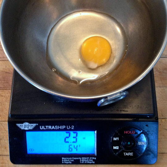egg on scale