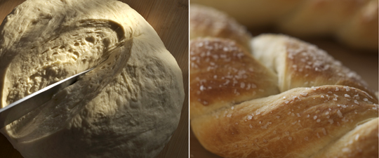 Bread basics on the rise and  ready to go. Photo by Donna Turner Ruhlman.