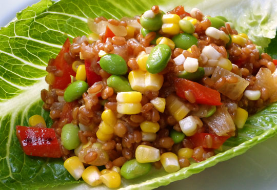 Wheat berry salad. Photo by Donna Turner Ruhlman.