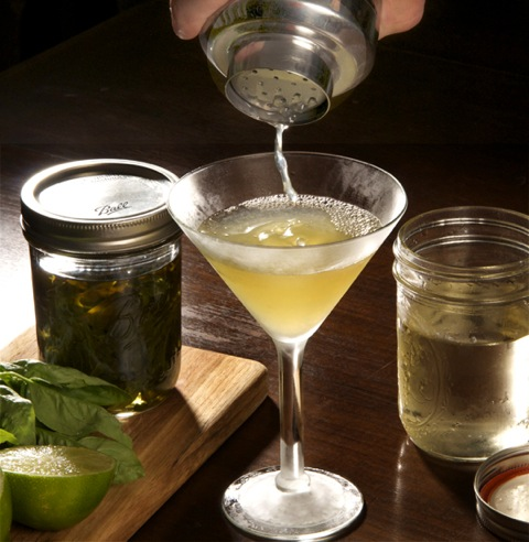 The basil gimlet