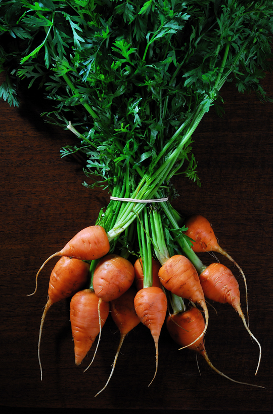 Fresh carrots. Photo by Donna Turner Ruhlman.