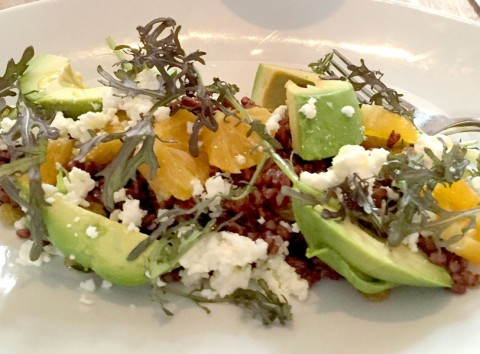 avacado-orange-salad-croppe